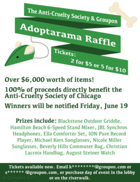 Poster_raffle_email